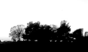 2012-11-25 17.36.16_Agnes